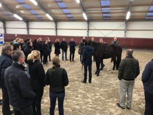 Paarden_dierenartsen Stal Chardon feb 2018
